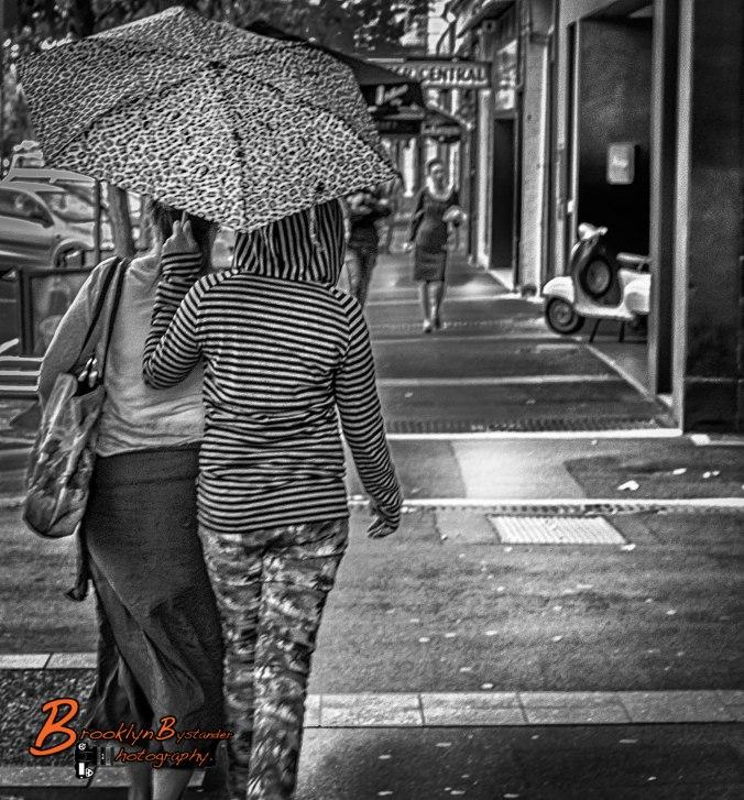 Adelaide Umbrella