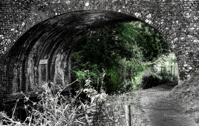 Bridge Green
